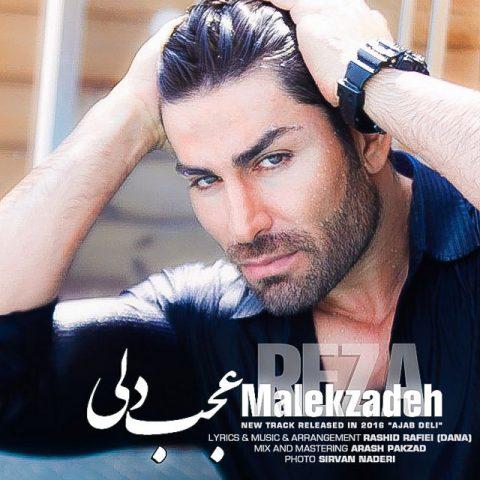 آهنگ رضا ملک زاده | عجب دلی