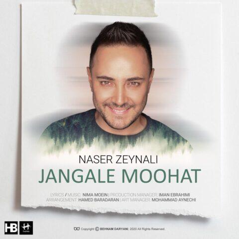 آهنگ ناصر زینلی | جنگل موهات