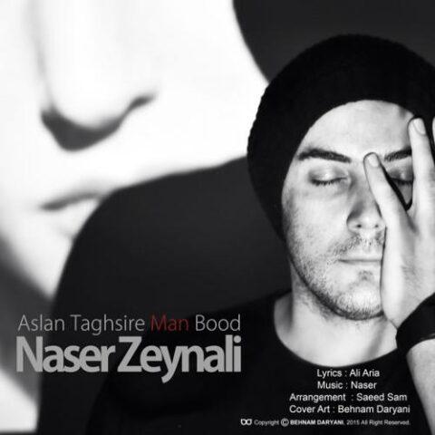 دانلود آهنگ ناصر زینلی اصلا تقصیر من بود