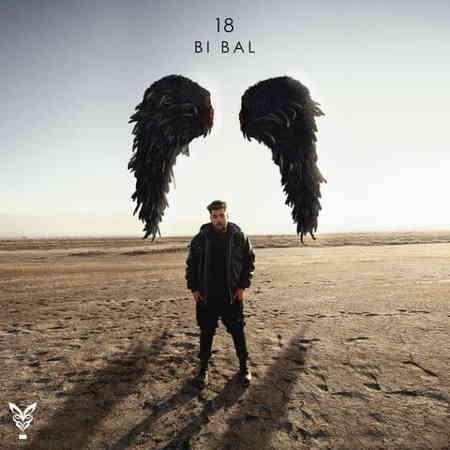 آلبوم بیبال |18